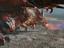 Обзор: ArcheAge - Новое топовое оружие Черного Дракона
