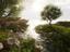 Crytek представила движок CryEngine для Android