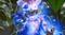 """Biomutant - Особенности и стиль игры через билд """"Пси-чистота"""""""