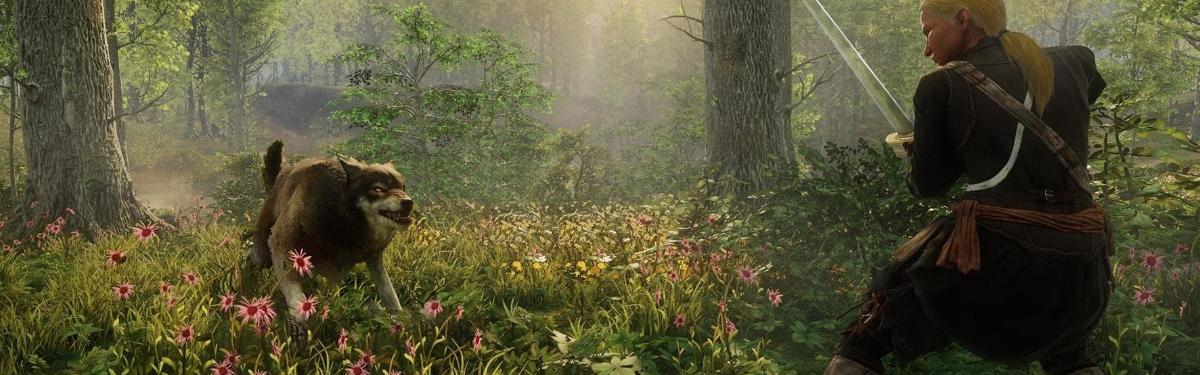 Мнение: New World - Для кого создана игра?