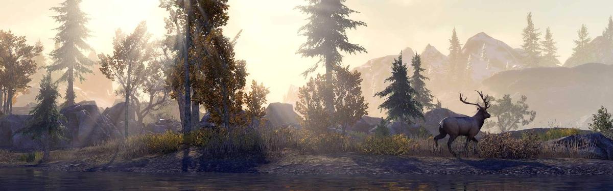The Elder Scrolls Online - Релиз улучшенного издания для консолей откладывается